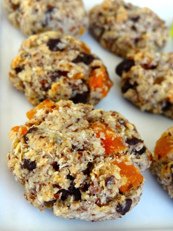 Dark Chocolate Almond Meal Cookies with Apricots & Coconut