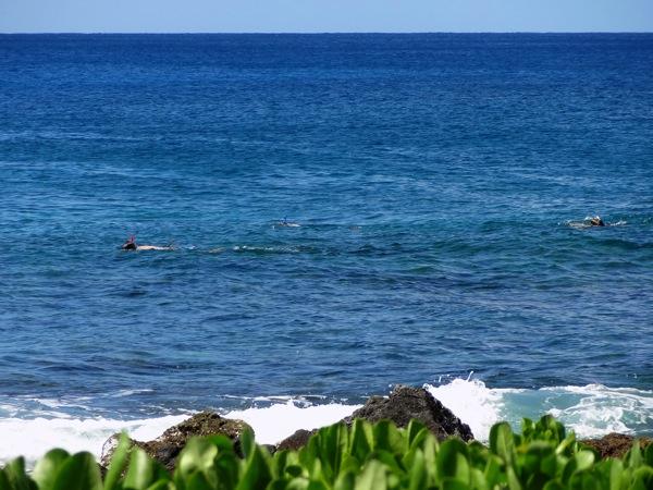 snorkelII.JPG